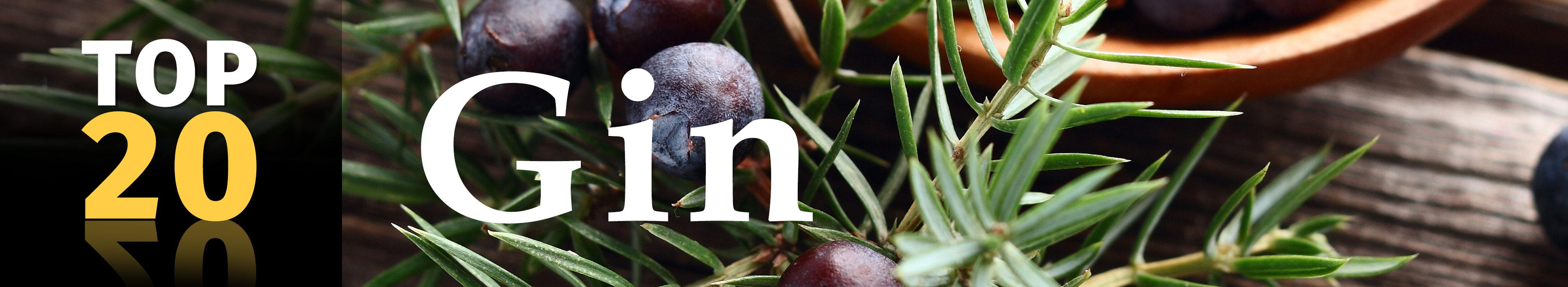 Top 20 Gins im Angebot