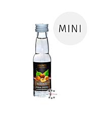 Dolomiti Haselnuss Schnaps Miniatur / 35 % Vol. / 0,02 Liter-Flasche