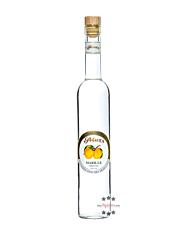 Prinz: Marillen-Schnap / 40% Vol. / 0,5 Liter - Flasche