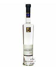 Lantenhammer Schlehengeist / 42 % vol. / 0,5 Liter-Flasche