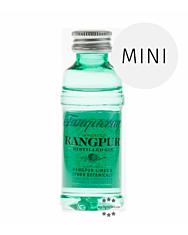 Gin: Tanqueray RANGPUR / 41,3% Vol. / 0,05 Liter