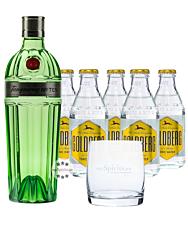 Tanqueray No. 10 Gin (47,3 % Vol., 0,7 L) & 5 x Goldberg Tonic (0,2 L) inkl. 0,50€ Pfand  + 1 Tumbler
