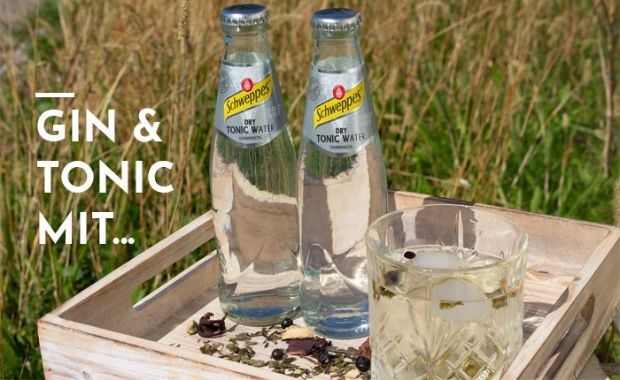 Gin Tonic mit Dry Tonic Water von Schweppes