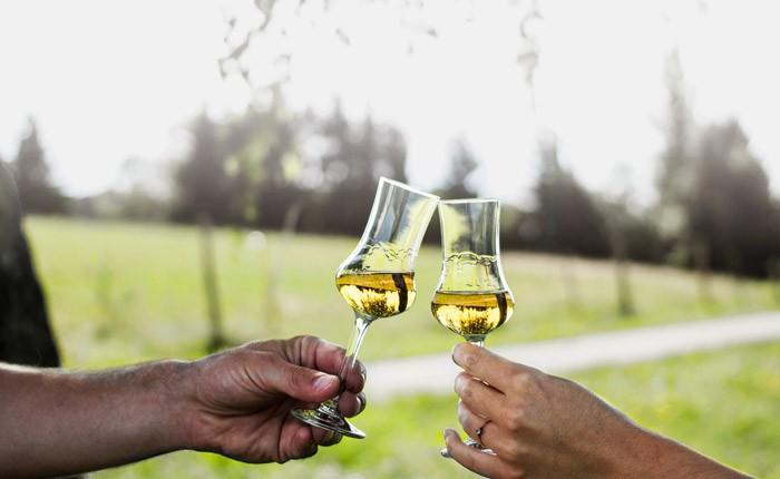 Schnaps trinken mit Stil: kultiviertes Trinkvergnügen mit Genuss