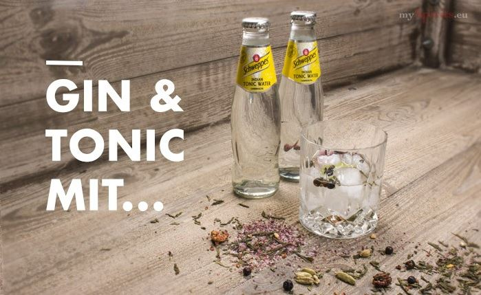 Gin Tonic mit Schweppes Indian Tonic Water
