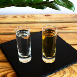 Wie trinkt man Tequila?