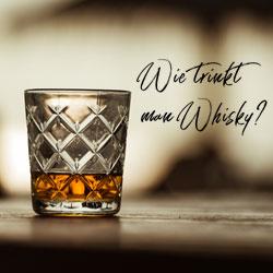 Wie trinkt man Whisky? Tasting-Tipps für alle Sorten