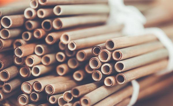 Bambustrinkhalm