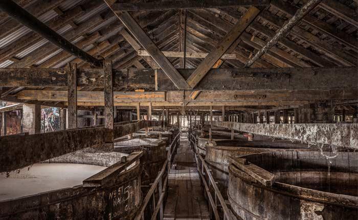 Fermentation der Rum-Herstellung