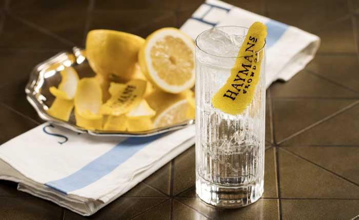 Haymans Gin Tonic mit Zitronenzeste