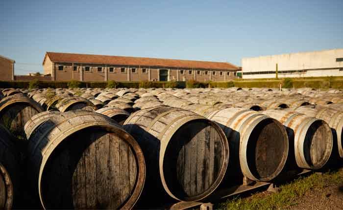 In Eichenholzfässern reift der Vermouth unter freiem Himmel für nochmal mindestens 12 Monate