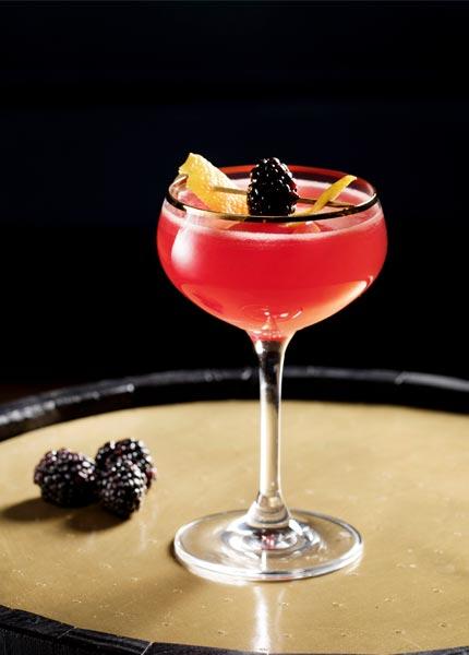 Genießen Sie Sloe Gin als Cocktail