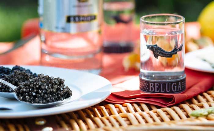Beluga, der perfekte Vodka für Genießer!