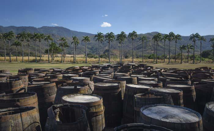 Holzfässer in dem der Rum gelagert wird.